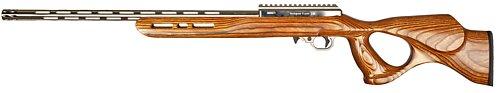 17 WSM IF-5, Brown Thumbhole Stock