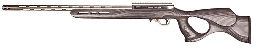 17 WSM IF-5, Gray Thumbhole Stock