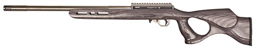 17 WSM Deluxe, Gray TH Stock