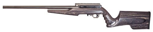 Summit with tapered barrel and gray stock